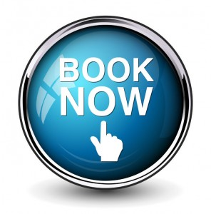 41564678 - book now button